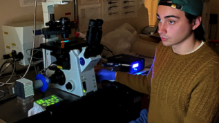 Honors student shown using a microscope.