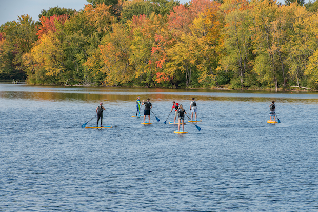 A group of Honors students standing on paddleboards in the middle of the Stillwater River.