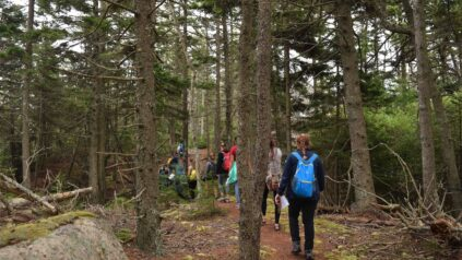 Honors students walk together on a path through the woods on Hurricane Island.