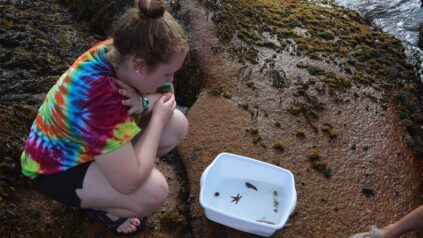 An Honors student looks at organisms in the tide pools on Hurricane Island.
